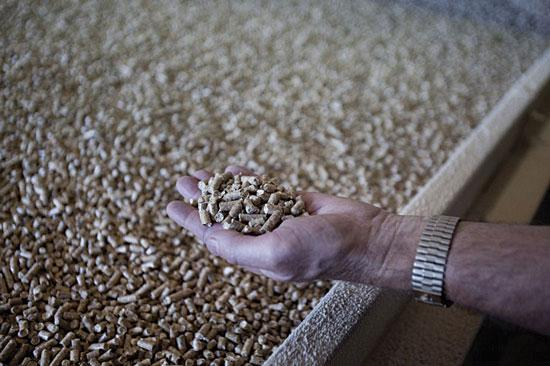 According to the North America Wood Fiber Review, a report produced by Wood Resources International LLC, the U.S. exported 591,000 tons of wood pellets in 2010 at an estimated value of $110 million.