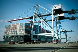 The TraPac Inc. terminal at Dames Point is Jaxport's largest.