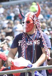 One of many Texans' fans show their colors.