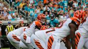 Bengals quarterback Andy Dalton under center.