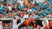 The Cincinnati Bengals are lowering prices on some tickets for the 2013 season, as well as raising the price of some seats.