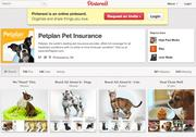 Petplan Pet Insurance's Pinterest page offers pictures of its amenities as well as tips for tourists.