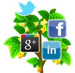 Are you on social media? Financial advisers are