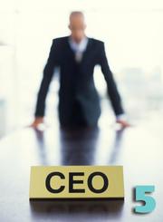 Chief Executives, $173,900