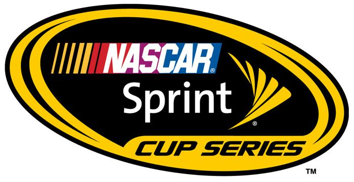 Dodge is withdrawing from NASCAR. The decision affects both the Sprint Cup and Nationwide Series.