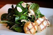 Grilled sea scallop salad will be among the menu items at Tavern at Mission Farms.