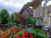 Julian is nestled in the Brookside neighborhood in Kansas City.