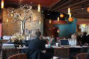 """Mestizo's bar, decorated with a tree of life sculpture, offers more than 40 types of tequila. """"Good restaurants and busy restaurants are all centered around the bar,"""" Chef Aarón Sánchez says."""