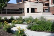 Lilies, heather, roses and a variety of xeric plants line a winding path on the rooftop garden at Saint Luke's. The garden is visible from many patient rooms in the medical center.