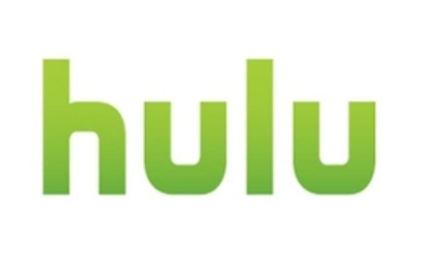 Silver Lake Partners has reportedly dropped out of the bidding for video-on-demand service Hulu on the day that bids are due.