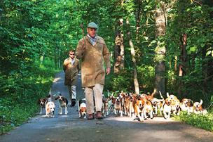 Every evening Buck Wiseman takes his pack of 40-plus beagles for a walk on his property. Behind him is John Maclean who sometimes helps corral the dogs. They are shown in this photo on one of their nightly strolls.