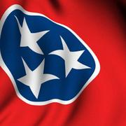No. 5 Tennessee State Government