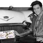 The Med offering Elvis license plates for non-Tennesseans
