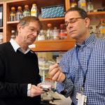 Infusion device gets $1.47 million Army grant