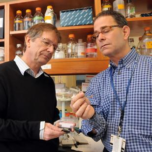 Erno Lindner and Edward Chaum are creators of an automated delivery system for the drug Propofol.