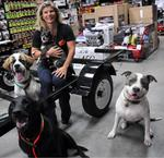 Take Your Dog to Work on June 22