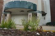Weeds and garbage create an unsightly image in front of the former mall.
