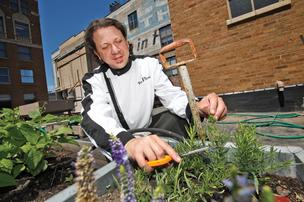 Executive chef Kevin Sloan gets fresh ingredients from a garden on The Riverside's rooftop.