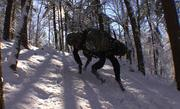 Boston Dynamics' Big Dog is a smart pack mule for military outfits.