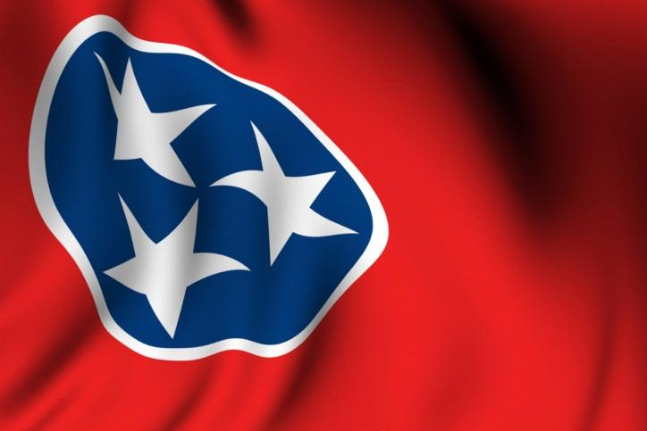 The White House website currently features petitions for Tennessee and 18 other states to secede.