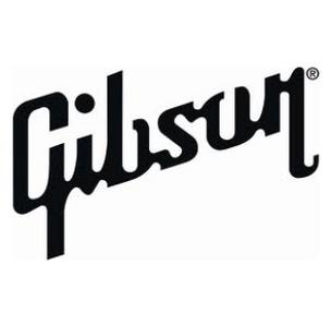 Gibson Guitar raid search warrant