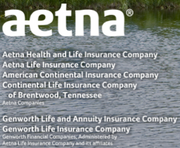 Continental Life Insurance Co. of Brentwood2013 rank: 52012 rank: 5Continental Life wrote $6.8 million in life insurance premiums in Tennessee in 2012. Tennessee premiums represent 4 percent of their total life premiums.