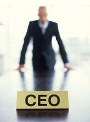 No. 8: Chief executive, $166,620