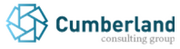 Cumberland Consulting Group2013 rank: 1Revenue growth, 2009-2012: 304%Revenue 2012: $36.3 million