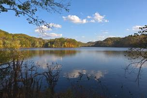 A view of Radnor Lake.
