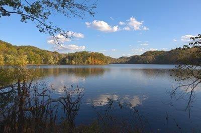A view of Radnor Lake.
