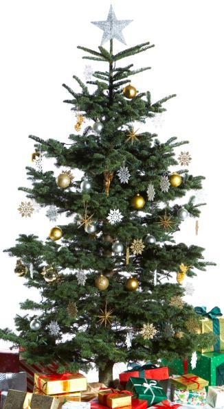 Christmas trees can be recycled at three locations beginning Jan. 2.