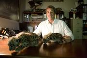 Nashville Zoo President Rick Schwartz with two snow leopard cubs he is taking care of in his office.