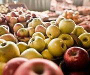 Bushels of apples from Barnes Produce at the Farmers' Market.