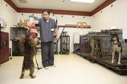Elder Guzman, originally from Honduras, works with a dog in the CCA Metro Canine Training Program at the Metro Davidson County Detention Facility.
