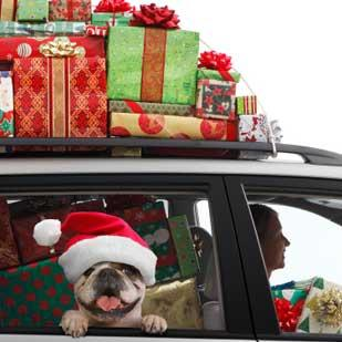 Families planning to travel during the holidays can expect to pay less for gas than the week before, according to AAA Texas.