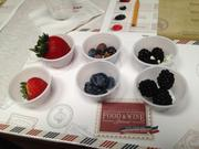 """Nutrition guru Tina Ruggiero introduced guests to """"berry flights"""" at several Authentic Taste seminars at the Epcot International Food & Wine Festival."""