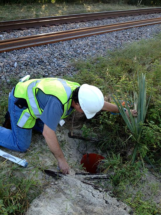 Lotspeich & Associates Inc.'s D.J. Silverberg checks a previously-set gopher tortoise trap to see if it needs resetting.
