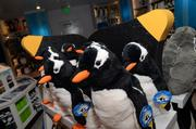 These plush penguins inside the Glacial Connections retail store will sell like hot cakes.