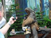 Wookiee hugs help ease disappointment. Even if they are a little soggy.