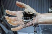 Luke's prosthetic hand from Empire Strikes Backon display inStar Wars: Where Science Meets Imaginationat Orlando Science Center.