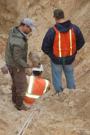 Though the dig for the media resulted in no gopher tortoise being caught, workers later that day found one in another nearby burrow.