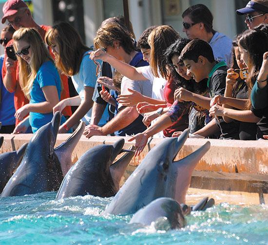 SeaWorld sales climbed 7 percent this past year.