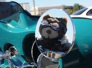 Fuzzy motorcycle accessories are as popular as leather and chrome at Biketoberfest 2012.