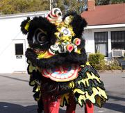 Performers don the lion costume for the traditional dance that will bring luck in the new year.