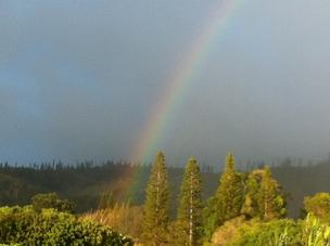 A rainbow joins the dark clouds at the Munro Trail on the Hawaiian island of Lanai.