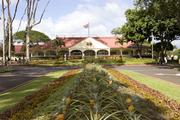 2. Dole Plantation, Oahu.Number of visitors in 2011: 1.5 million, up 15 percent from 2010.