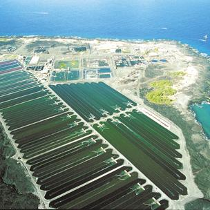 Cyanotech Corp. plans to increase by 33 percent its Astaxanthin production capacity at its facility in Kailua-Kona, Hawaii.