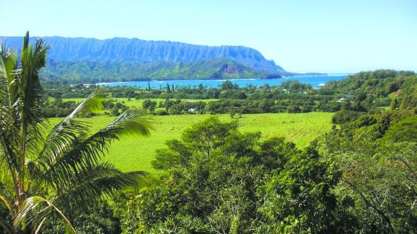 Natural beauty, such as this view of Hanalei from the Princeville.