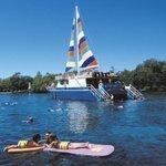 Tsunami changes cruise company's course