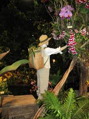 One exhibit pays respect to the so-called orchid hunters of the early 1800s - collectors who risked their lives to find rare orchids and plant species along the Amazon River and far-flung locales. The exhibit is by Waldor Orchids of Lindwood, N.J.
